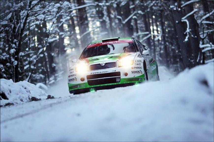 """Halls Winter rally"" lenktynių akimirka"