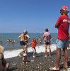 Vasarą Sočyje rusų poilsiautojai vos tilps – vietą prie jūros teks užsiimti iš vakaro